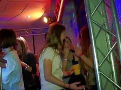 Spannen Liebend Partygirls