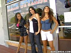 Jenaveve Jolie, Olivia O'Lovely, Lacey Duvalle are three perfect bodied