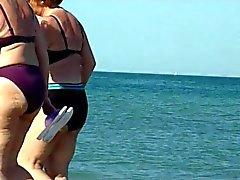reizvoll Omis spioniert auf dem Strand