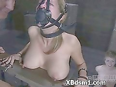 Bdsm Bebê Erotica Entertaining Dor