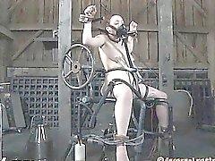 Engellenmiş piliç sevgi tüneli için oyuncak sondajı alır