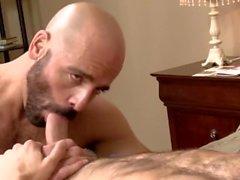 Adams Russo och Ty Rode - Ikon Male Underbara Män knullar med en Cumshot