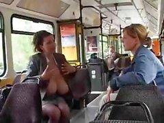 Pechos Gigantic del ordeño autobuses