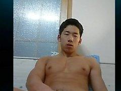 korean 14