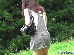 Asiatiska pees i offentliga parken