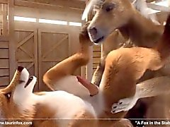 3D gay anthro horse and fox fuck