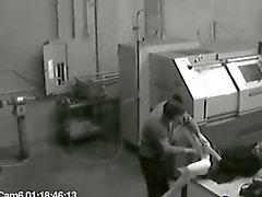 Eine Sammlung Sicherheits Videos wieder