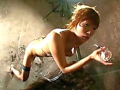 I Love My Dildo Vol. 6 Oil Edition
