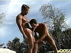 Les gars très élevées sont à proximité de la piscine et la ils sucent le et de baise !