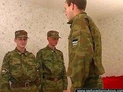 русским армию 12