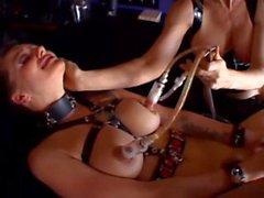Del Belladona Sexo En El Ordeño Lezzie Tortura