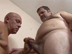 El oso más grande y el electricista