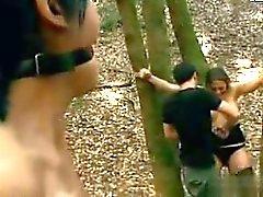 Due giovani hanno attaccato della foresta