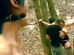 Två teens anföll i skog