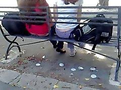 Knippert in het openbaar