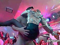 Les nymphos singulières sont complètement folles et nues à la fête hardcore