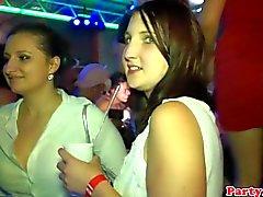 Wirkliche Partei Euro blonden Büffelleder Drehknopf