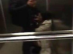 Kirpik emme dick in asansör kapalı