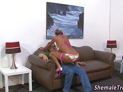 Shemale трахает проигравшие задницы