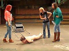 # Damen Und Ein Schwein