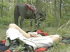 рогатый супруга на лесных тройку