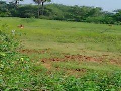 Andhra Aunty in Rangampeta Village