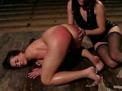 Taylor Vixen spanked and strapon fucked
