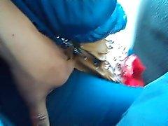 otobüste 1 de kedi reamed eşini dokunmaya