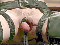 Extreme Clover Clamp Ball Torture