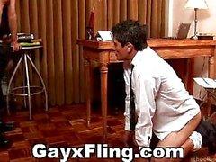 Homosexuell Jungs Büro Stampfen