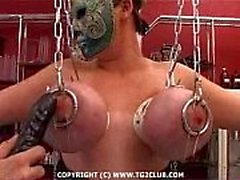 base BDSM.puncture rigido dei chest.punishment