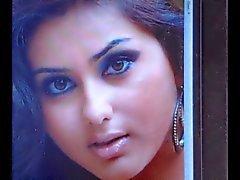 Cum eerbetoon aan Indiase tamil actrice Namitha