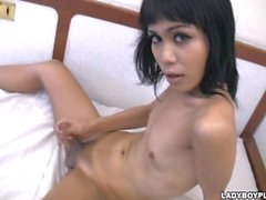 Sizzling shemale ladyboy strips out of black lingerie
