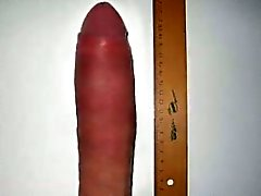 Accroché Monster Cock mesure Bites