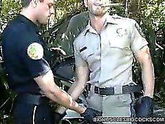 Gey Cop Vücut geliştirmeciler