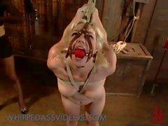 Bound blonde Esel eingehängt und Schlagsahne