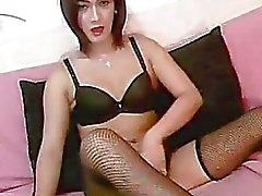Pretty Ladyboy Strokes her Cock