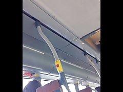 Blinkende auf Bus Schwedens 003