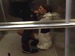 Amateur Blowjob aus dem Aufzugs