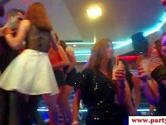 Europäische Sexparty Schlampen Reiten Stripper Hähne