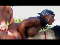 muscle noir femme baise un cheval