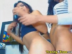 Horny Tranny Pleasures Her Room Mate