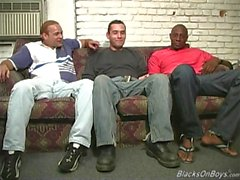 Черные мужские делить с ними осла забавной белый парень