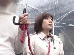 Muutosta Lemmikkiystävällisiä huoneita Kun kategoriaan kategoriaan Suzumura Airin