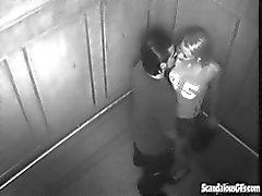 Диких пола в лифтовой получает Пойманные на вебкамеру