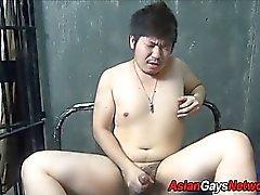 Fett Asia Amateure Spritzt