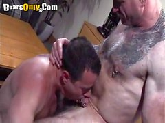 Sucking Daddys Pierced Cock
