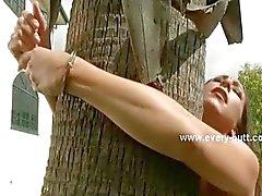 Escravo amarrado do lado de fora da casa de árvore