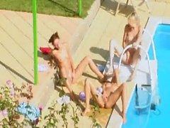 Drei Küken liebenden geheime durch das Pool