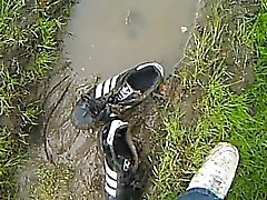 Adidas superstar in piss and dirt